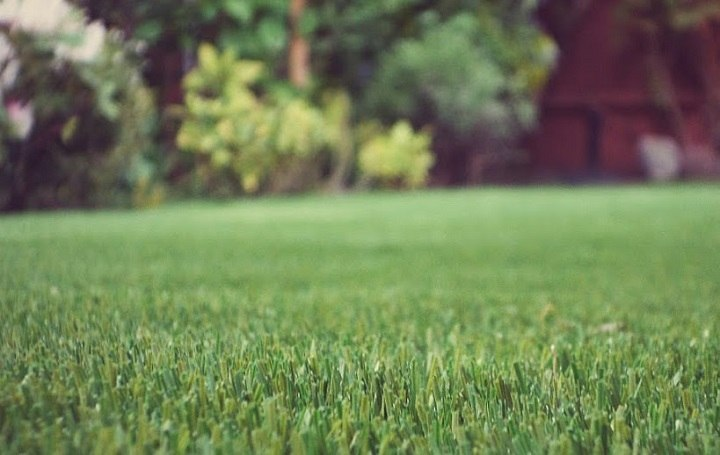 synthetic-grass-infill