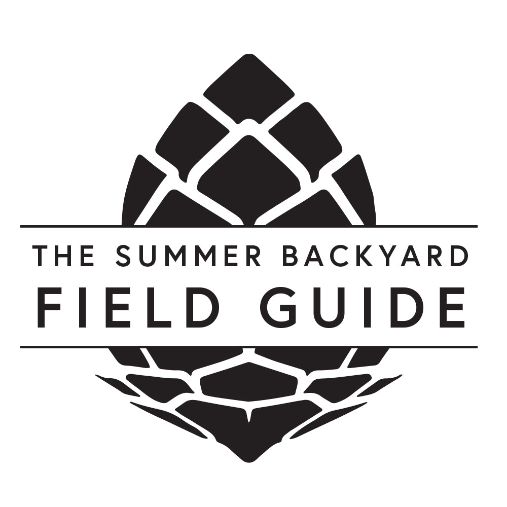 Field Guide Chapter 5