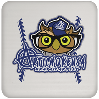 ArtichokeUSA Character and Font design #3. Yankees Owl. NY Yankees Fan Art. Let's Create Your Own Design Today. Coaster