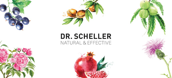 Why we Love : Dr Scheller