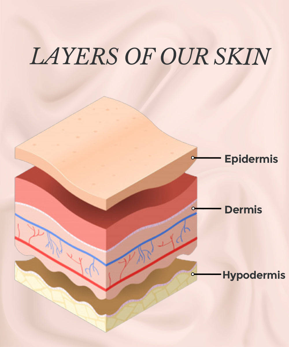 This is an image showing how moisturiser affect the different layers of skin.