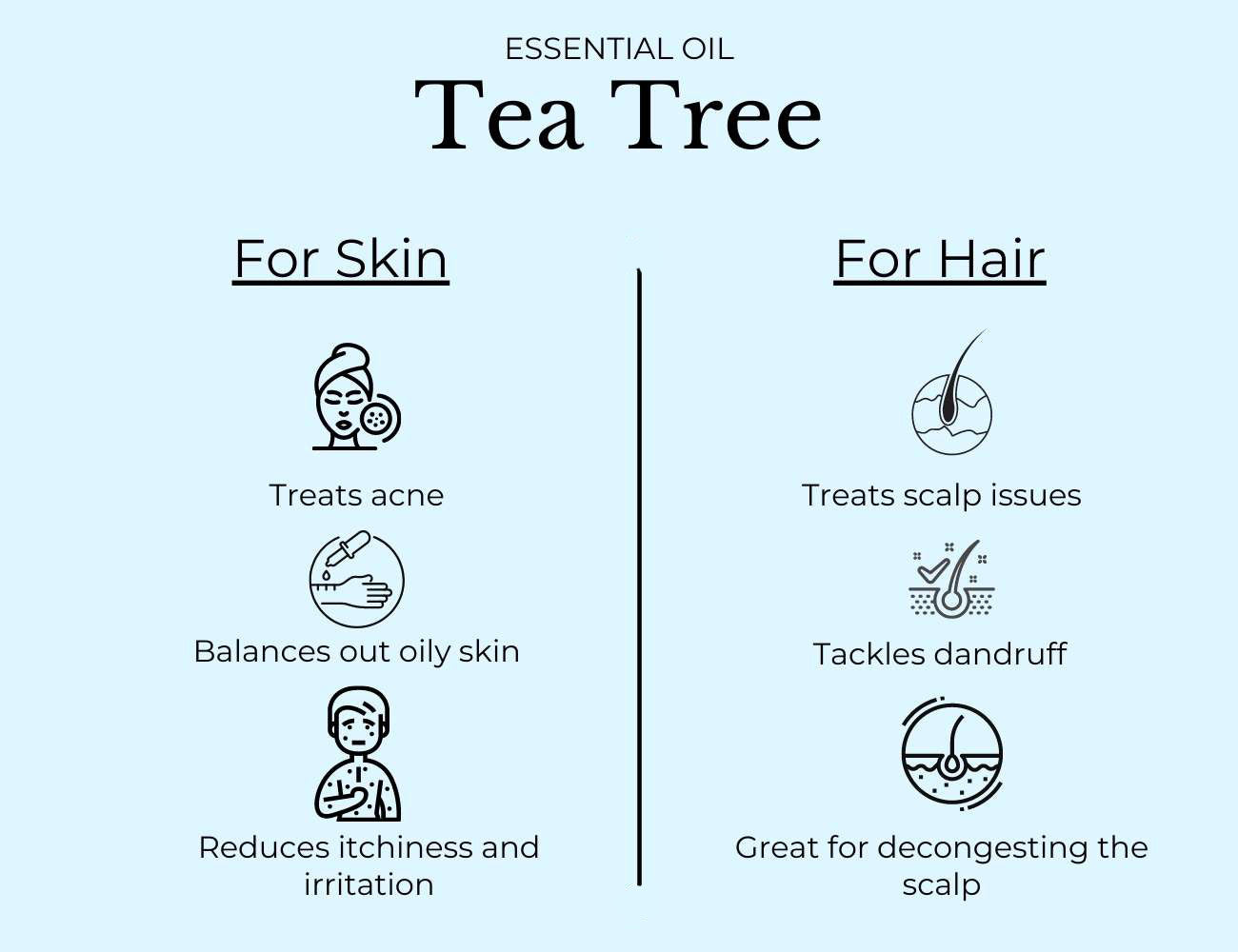This image tells us about Tea Tree Oil and its uses.