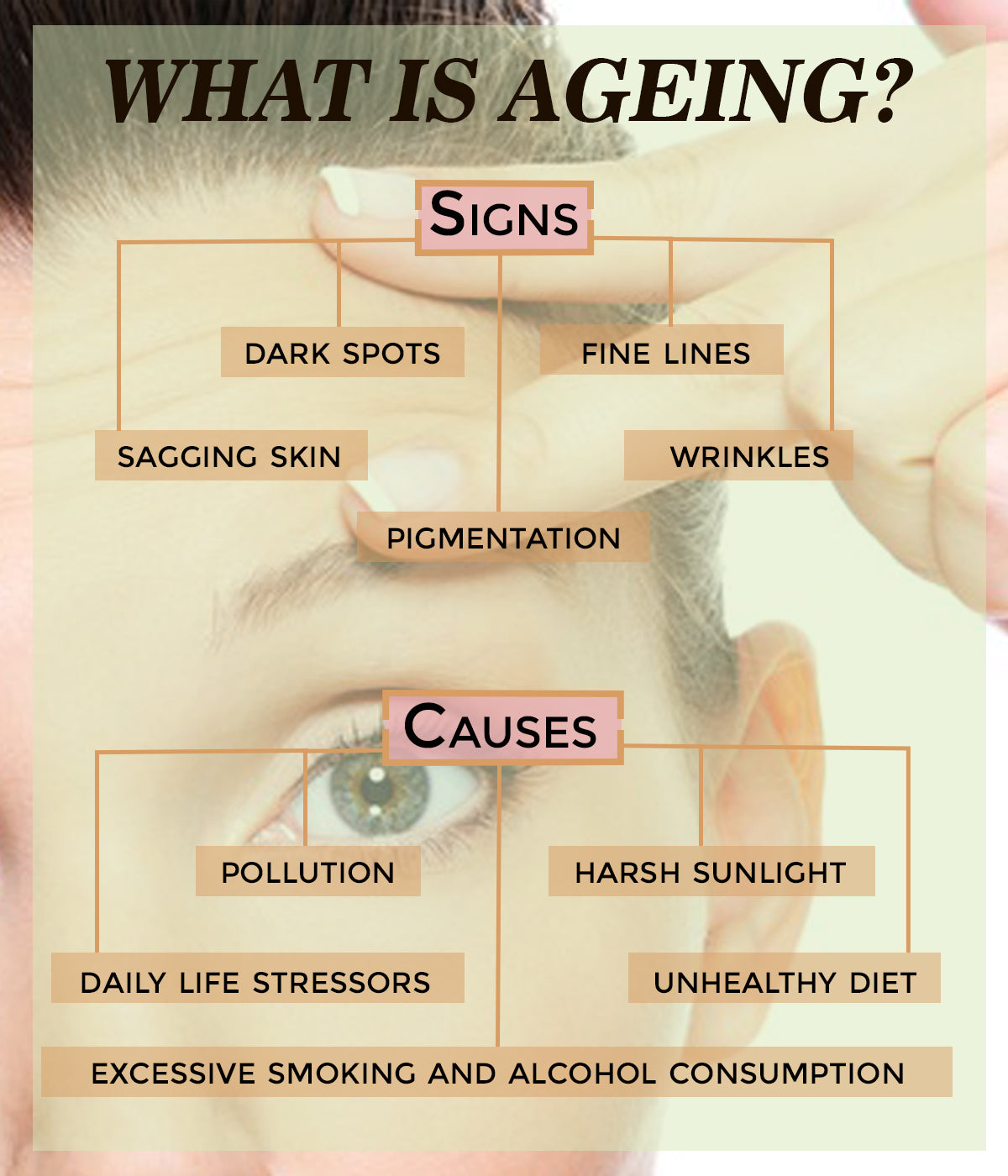 This is an image of what is ageing on www.sublimelife.in