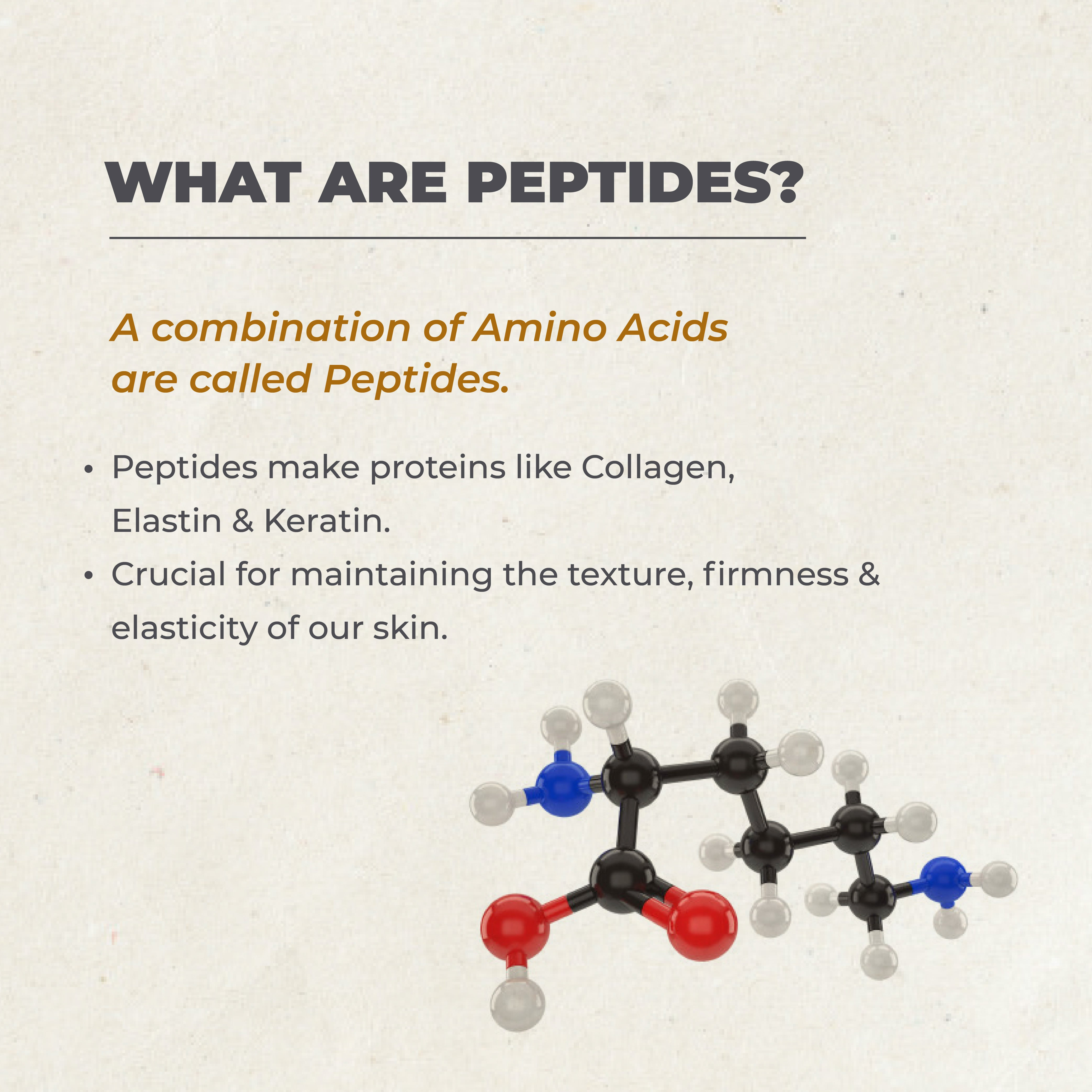 This is an image of what are peptides on www.sublimelife.in
