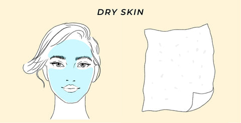 This is the skin type test result for dry skin