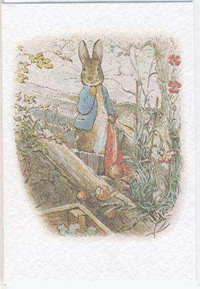 Peter Rabbit Mini Card - Olleke | Disney and Harry Potter Merchandise shop