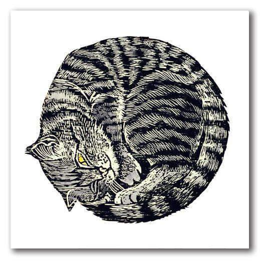 Stationary - Greeting Card Kitten By Annie Soudain