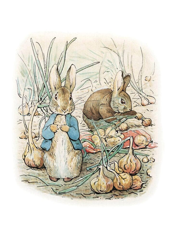 Peter Rabbit Card: Peter Rabbit And Benjamin Bunny Olleke | Disney and Harry Potter Merchandise shop Hype