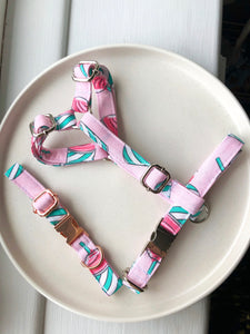 Dachshund size summer collection fabric strap harness
