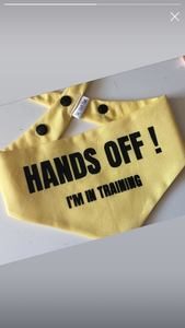 HANDS OFF I'm in training Snap Bandana.