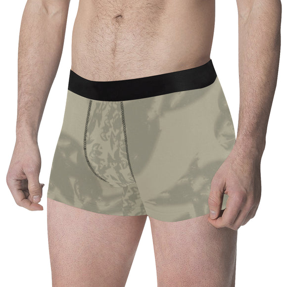 Eagle Taupe Gray Men's Classic Boxer Briefs (Model L34)