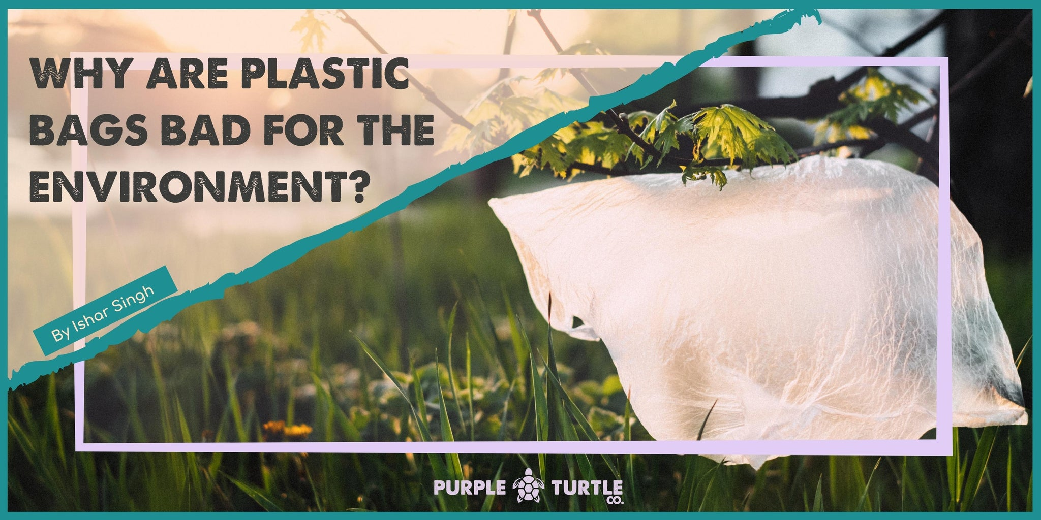 Why are plastic bags bad for the environment?
