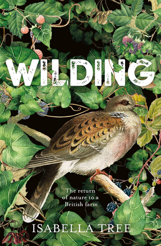 Front cover of Isabella Tree's book 'Wilding' with a bird sitting in a tree.