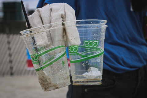 'Compostable' eco cups found during a beach clean-up.