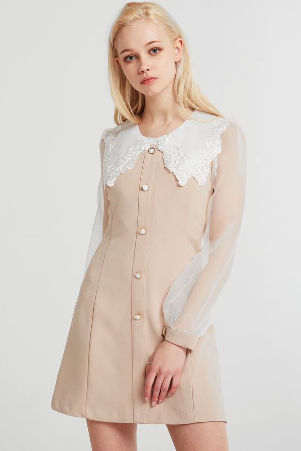 Emma Lace Collar Dress