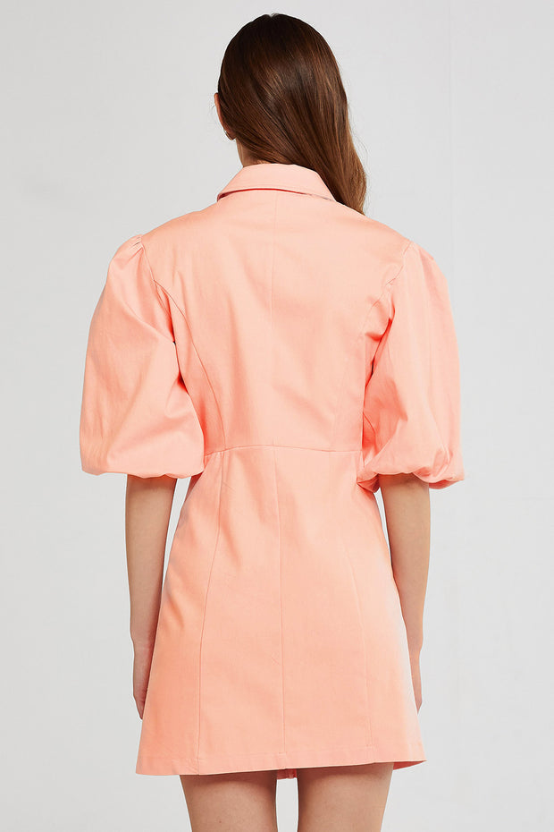 Isabel Puff Sleeve Dress