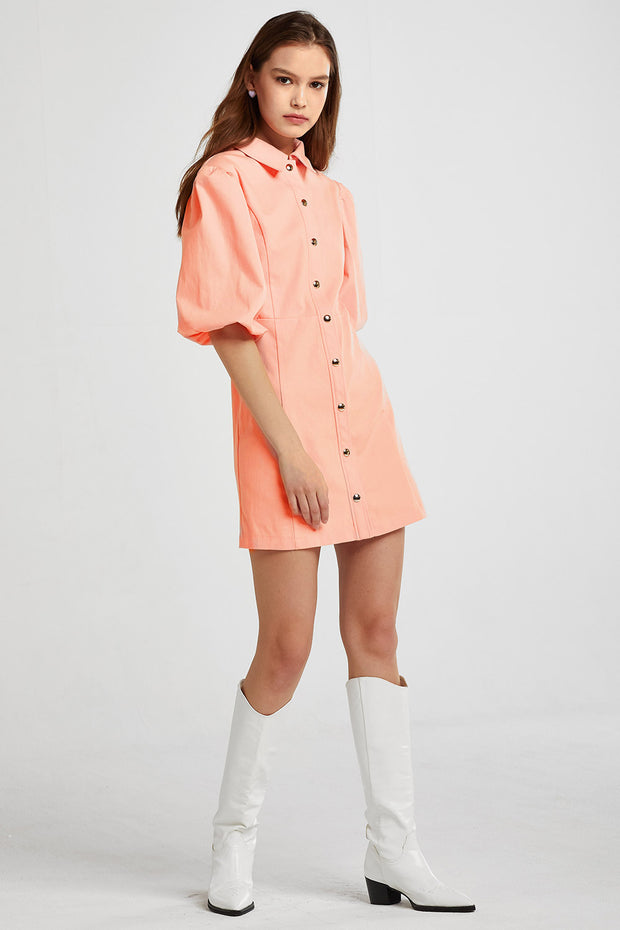 storets.com Isabel Puff Sleeve Dress
