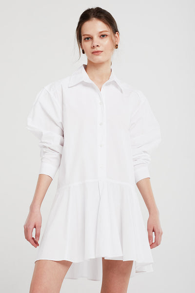 storets.com Chloe Flare Hem Shirt Dress