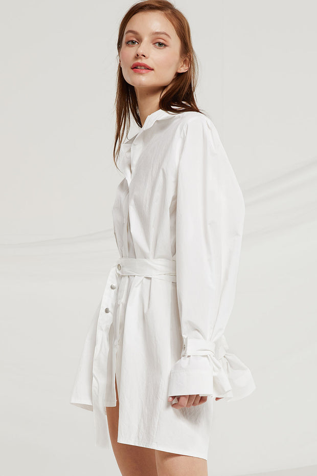 storets.com Tenley Asymmetric Hem Shirt Dress
