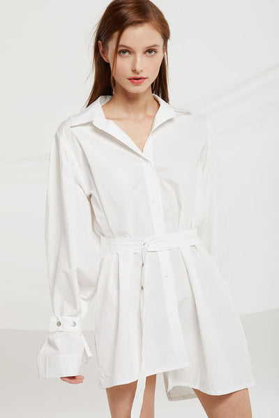 Tenley Asymmetric Hem Shirt Dress