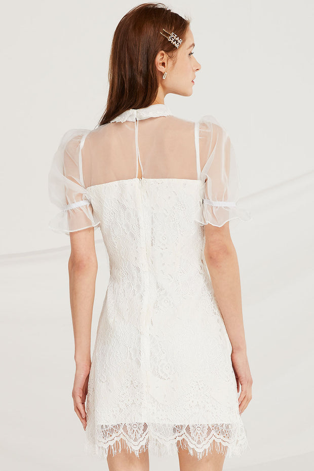 Daisy Lace Dress w/ Organza Top