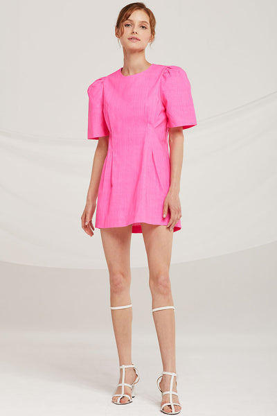 Emily Puff Sleeve Mini Dress