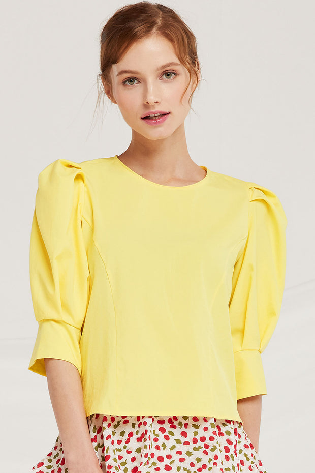 Skylar Puff Sleeve Crew Neck Top by STORETS