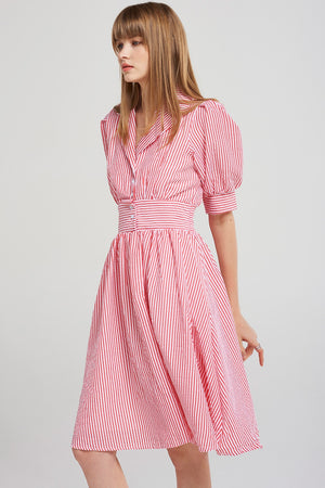 Ashley Collared Stripe Dress