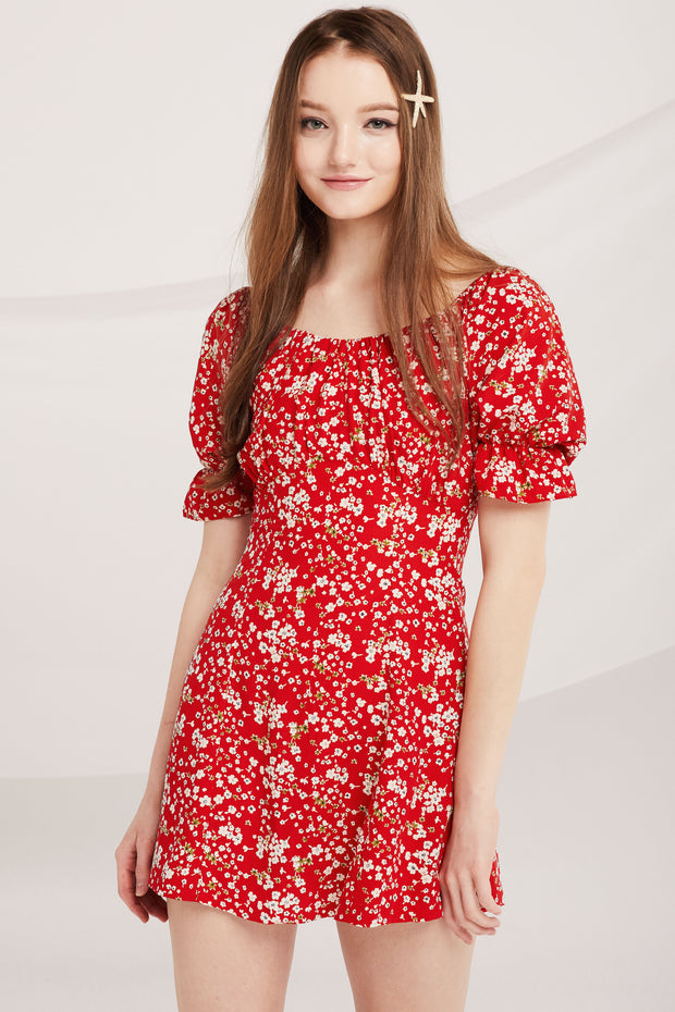 Sasha Floral Skater Dress