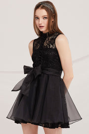 Henley Organza Lace Dress