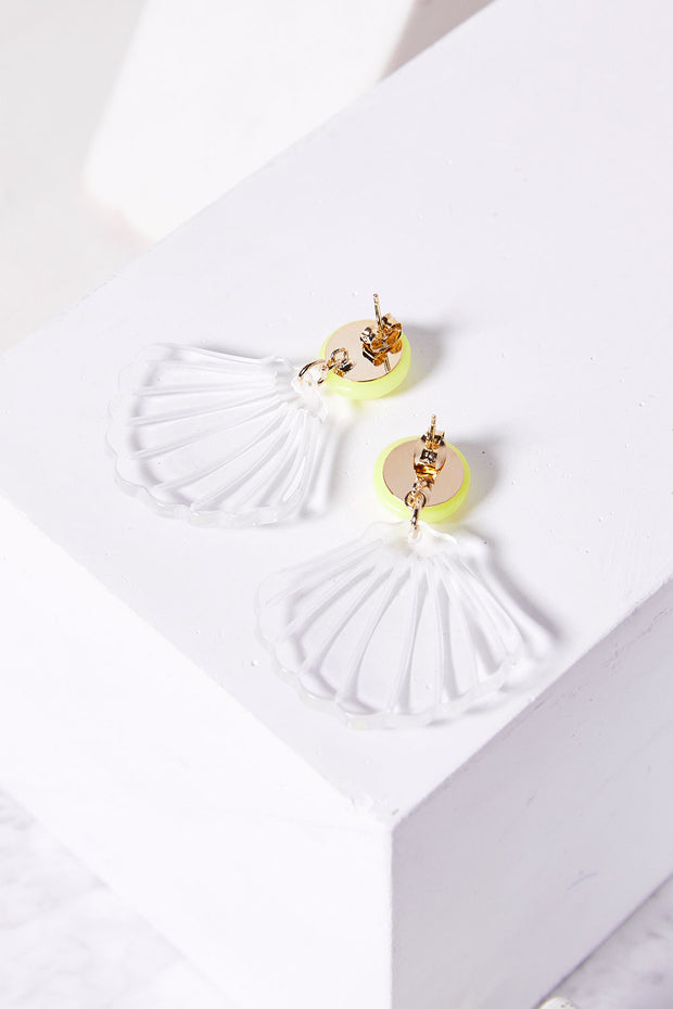 Clear Seashell Earrings