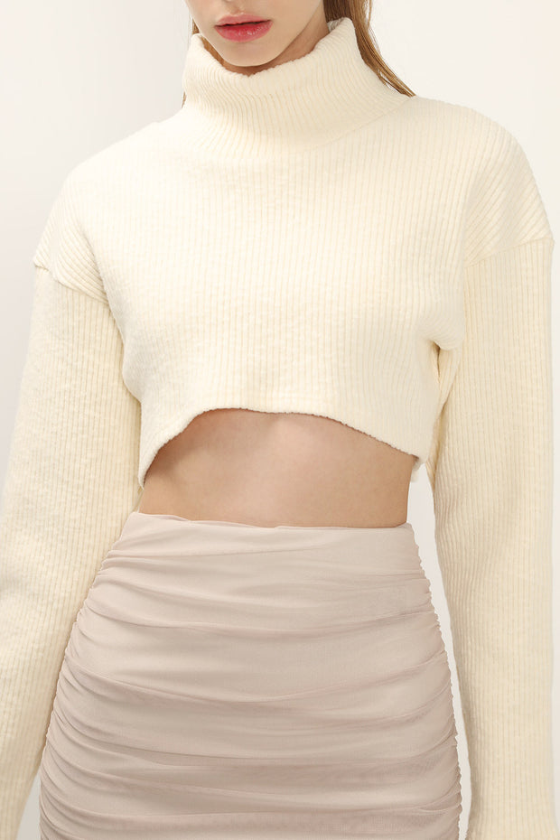 Peyton High Neck Crop Top