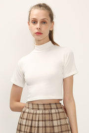 Rachel Mock Neck Crop Top