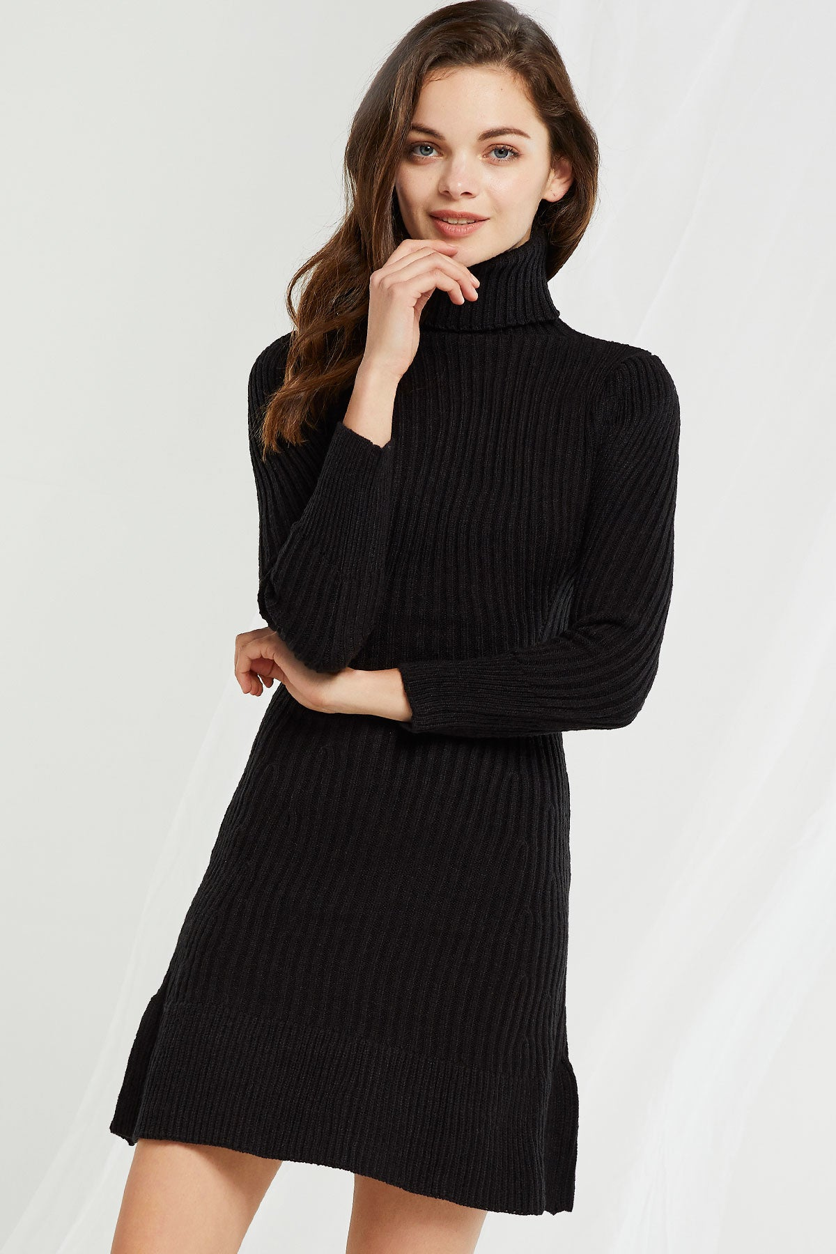 Eve Ribbed Turtleneck Dress