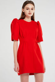 Maggie Puff Sleeve Pintuck Dress