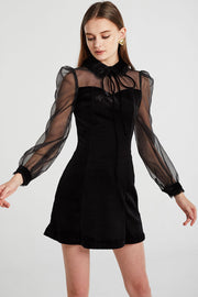 Sophia See-Thru Sleeve Velvet Dress