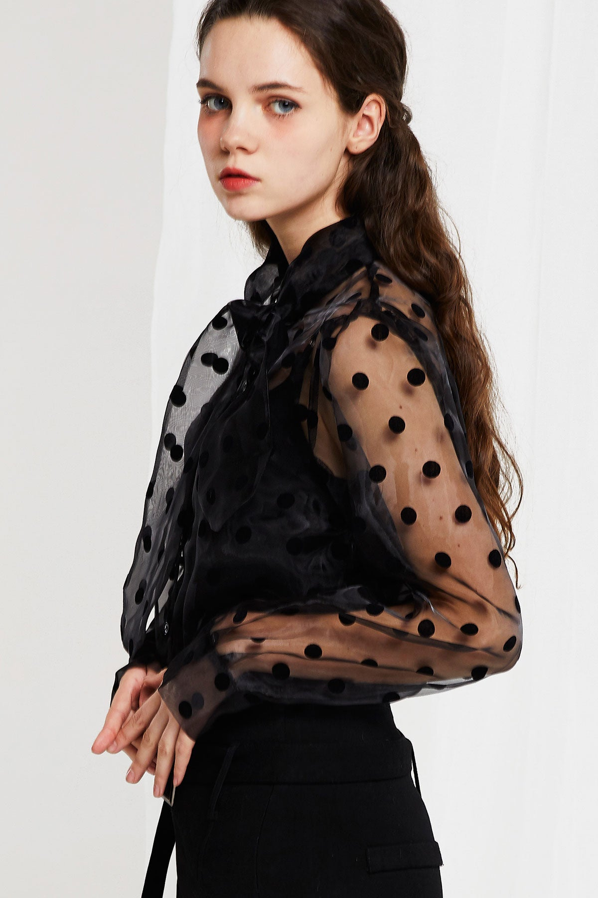 Sadie Polka Dot See-thru Blouse