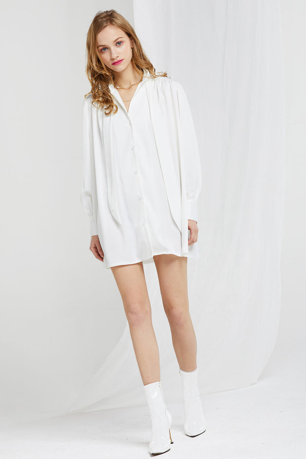 Arden Tie Shirt Dress