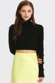 Zoey Rib-Knit Turtle Neck Crop Top