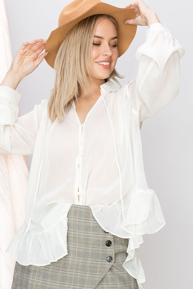 Alexa Sheer Button Down Blouse-4 Colors