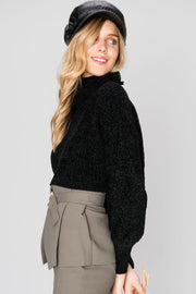 storets.com Petra Cropped Turtleneck Sweater-2 Colors