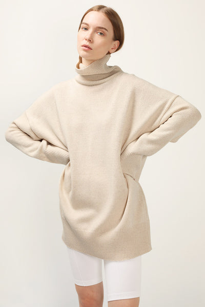 storets.com Hadley Turtle Neck Knit Dress