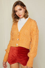 Vivian Cable Knit Crop Cardigan