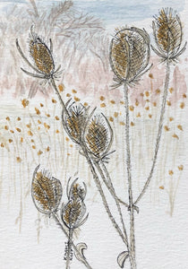 A Patch of Teasel