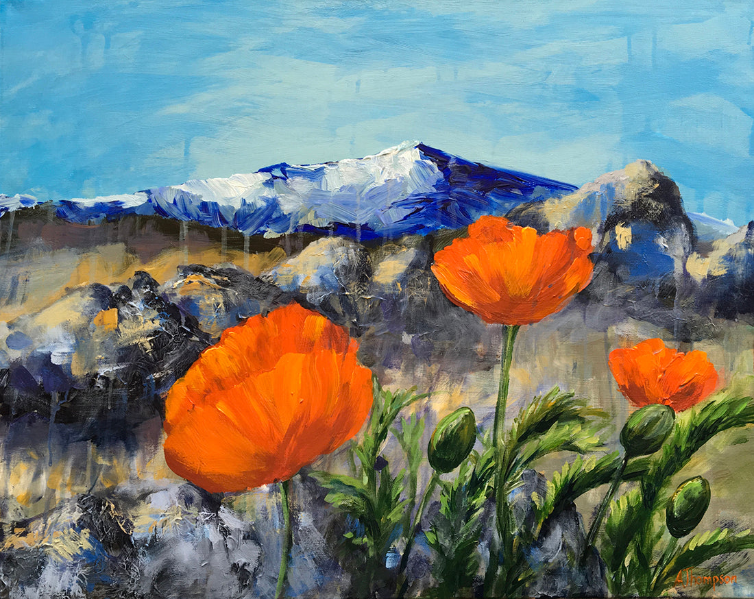Poppies with a Mountain View