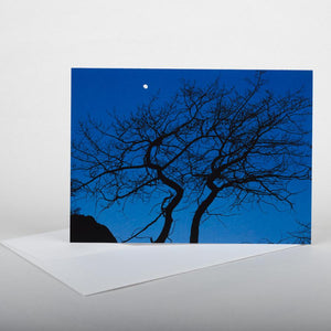 Evening Muse Note Card