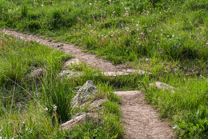 Sanitas Pastoral: Trail Stepping Stones; Mount Sanitas, Boulder CO
