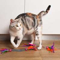 Fling & Chase Cat Toy