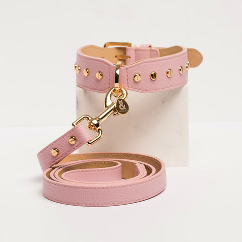 Berlin Leather Dog Collar Rose
