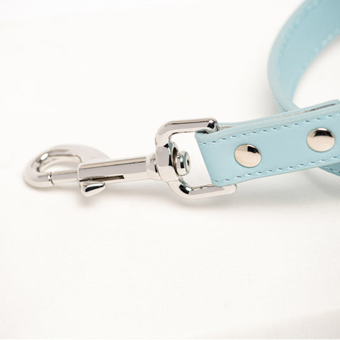 Paris Leather Dog Lead Powder Blue